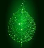 被连接的小点点线三角叶子 Eco在绿色背景的自然概念点燃几何poligonal低多象 皇族释放例证