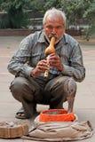 被迷住的眼镜蛇-印度 库存照片