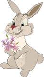 被迷恋的兔子 库存照片