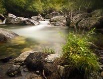 被迷惑的河 库存图片