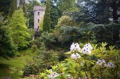 被迷惑的爱尔兰城堡和庭院 免版税库存图片