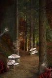 被迷惑的路在神仙森林里 免版税库存照片