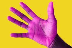 被递的紫色 库存图片