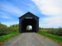 被遮盖的桥锯木厂小河新不伦瑞克 库存图片