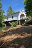 被遮盖的桥-俄勒冈 库存图片