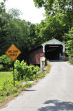 被遮盖的桥 免版税库存照片