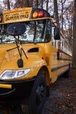 被遮蔽的公共汽车学校 免版税图库摄影
