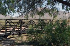 被遮蔽的桥梁在树下 免版税库存图片