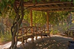 被遮蔽的荫径在公园Aivazovsky Partenit 库存图片