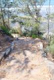 被遮蔽的道路穿过树-步行本质上 免版税库存图片