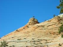 被采取的曲拱沙漠横向国家公园犹他 免版税库存图片