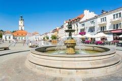 被采取的第13个2012年bialystok城市7月生活市场照片波兰广场 免版税库存图片
