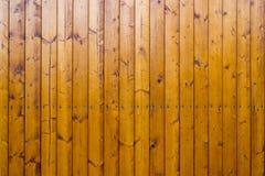 被钉牢的棕色篱芭衬里 免版税库存照片