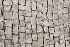 被铺的葡萄牙石头 库存图片