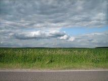 被铺的路光滑的边缘在一个干净的绿色领域的在乡下 免版税库存照片