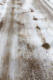 被锯的木头的树干 库存图片