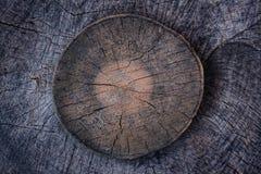 被锯的木树桩纹理 免版税图库摄影