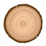 被锯的木棕色对象纹理  免版税库存图片