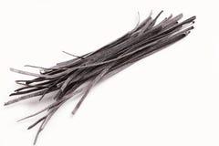 被隔绝的新鲜的未加工的黑乌贼墨水面团 免版税库存照片