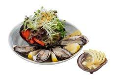 被隔绝的新鲜的牡蛎和日本沙拉服务用在白色石碗的切的和柠檬调味汁 免版税图库摄影