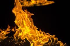 被隔绝的灼烧的火焰或火在黑背景 库存图片