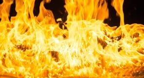 被隔绝的灼烧的火焰或火在黑背景 图库摄影