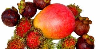 被隔绝的红毛丹、芒果和山竹果树特写镜头 图库摄影