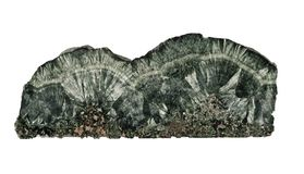 被隔绝的绿色baikalite矿物 库存照片