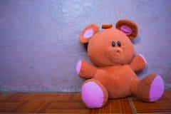 被隔绝的软的蓬松布朗和桃红色玩具熊放置在地板 库存图片