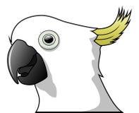 被隔绝的逗人喜爱的鹦鹉动画片 免版税库存图片