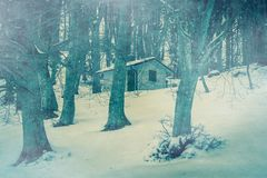 被隔绝的鬼魂房子在有雾的黑暗的森林里 库存图片