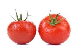 被隔绝的两个红色成熟蕃茄 图库摄影