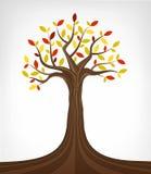 被隔绝的五颜六色的秋天树概念性艺术 免版税库存照片