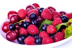被隔绝的全部莓果 库存照片
