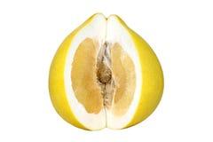 被隔绝的切的柚 库存图片