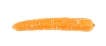 被隔绝的唯一嫩胡萝卜 免版税库存图片