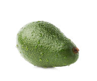 被隔绝的唯一成熟鲕梨果子 免版税库存图片