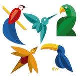 被隔绝的套不同的抽象鸟象 免版税库存图片
