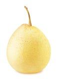 被隔绝的成熟中国梨 免版税库存照片