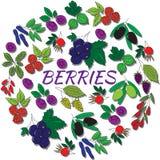 被隔绝的手拉的概述莓果 圆的五颜六色的集合 免版税库存图片