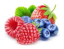 被隔绝的新鲜的莓果 图库摄影