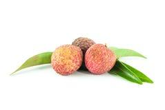 被隔绝的新鲜的lychee 免版税图库摄影