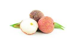 被隔绝的新鲜的lychee 免版税库存照片