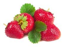 被隔绝的未加工的草莓 库存图片