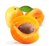 被隔绝的杏子 免版税库存照片