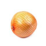 被隔绝的柚葡萄柚 库存照片