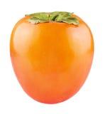 被隔绝的柿子果子 库存图片