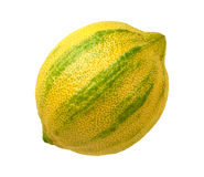 被隔绝的桃红色柠檬 免版税库存图片