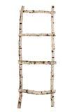 从被隔绝的桦树树干的梯子 免版税库存照片