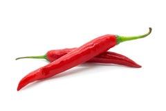 被隔绝的热的红色辣椒或辣椒 库存照片